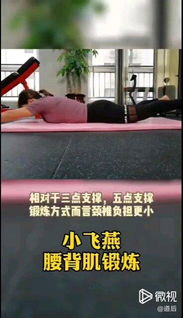 小飞燕腰背肌锻炼